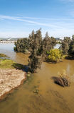 Guadiana river in vertical Stock Photos