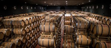 Guado al Tasso wineries in Bolgheri, Livorno, Italy. Royalty Free Stock Photography
