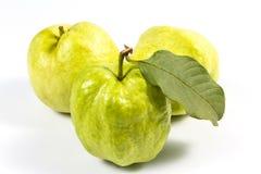 Guaiava (frutta tropicale) su fondo bianco Fotografia Stock Libera da Diritti