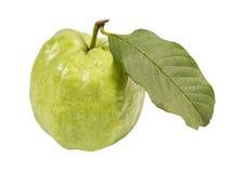 Guaiava (frutta tropicale) su fondo bianco Immagine Stock Libera da Diritti