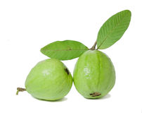 Guajava Royalty Free Stock Image
