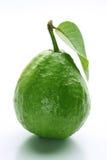 Guajava-Frucht Lizenzfreie Stockbilder