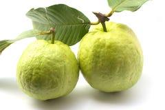 Guajava-Frucht Lizenzfreie Stockfotografie