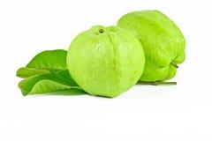 Guajava-Frucht auf weißem Hintergrund Stockfotografie