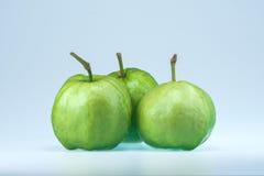 Guajava-Frucht auf weißem Hintergrund Stockbild