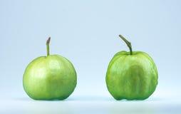 Guajava-Frucht auf weißem Hintergrund Lizenzfreies Stockfoto