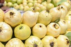 Guajava-Frucht oder Amrood-Bild Stockbilder
