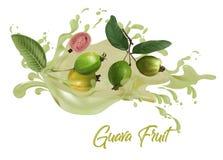 Guajava-Frucht Saft auf Wasserspritzen lizenzfreie stockbilder