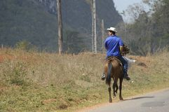 Guajiro,Viñales谷 免版税库存照片