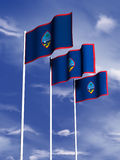 Guam flag. The flag of Guam flying in front of a blue sky stock illustration