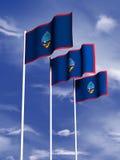 Guam-Markierungsfahne Stock Abbildung