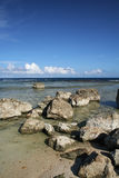 Guam Rocky Beach. Scenic view of a rocky beach in southern part of Guam Royalty Free Stock Images