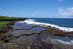Guam shallow reef Royalty Free Stock Photo