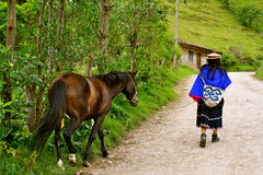 Guambiano indian woman, Colombia royalty free stock photography