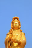 Guan Yin. Gold color paint Guan Yin statue with sky background stock photography