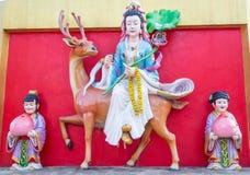 Guan Yin-Reiten Stockfotografie