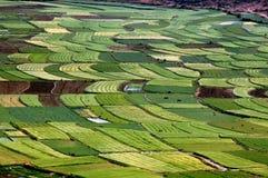 Guan Yin Xia, China: Ackerland-Muster lizenzfreie stockbilder