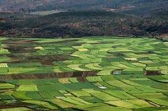 Guan Yin Xia, China: Fruchtbares Ackerland Stockbilder