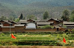 Guan Yin Xia: Naxi Farmhouses and Fields Stock Image