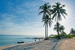 Guanabo strand i havannacigarren, Kuba Arkivfoto