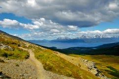 Guanaco de Cerro em Tierra del Fuego Imagem de Stock Royalty Free