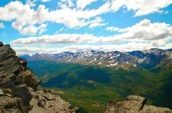 Guanaco de Cerro em Tierra del Fuego Imagens de Stock Royalty Free