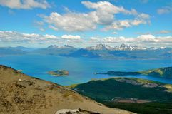 Guanaco di Cerro in Tierra del Fuego Fotografia Stock Libera da Diritti