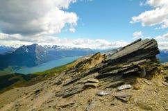 Guanaco di Cerro in Tierra del Fuego Fotografia Stock