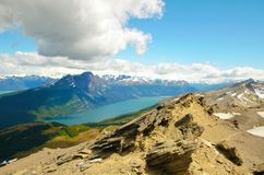 Guanaco di Cerro in Tierra del Fuego Fotografie Stock Libere da Diritti