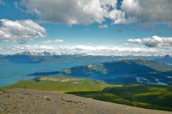 Guanaco di Cerro in Tierra del Fuego Fotografie Stock