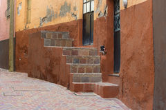 Guanajuato Mexico Royalty Free Stock Image