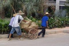 Guangdong Zhongshan, Κίνα: κατοικημένη κατασκευή πράσινων ζωνών Στοκ εικόνες με δικαίωμα ελεύθερης χρήσης