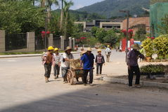 Guangdong Zhongshan, China: residential green belt construction Royalty Free Stock Image