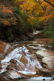 Guangwu-Berg im Herbst Lizenzfreies Stockfoto