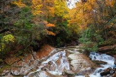 Guangwu-Berg im Herbst Lizenzfreie Stockbilder