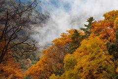 Guangwu mountain in autumn Stock Photos