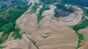 Guangxi arrière Chine du dragon photographie stock libre de droits
