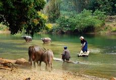 Guangxi Daxin Royaltyfria Foton
