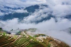 Guangxi Longji scenery. Eastphoto, tukuchina,  Guangxi Longji scenery Royalty Free Stock Photography