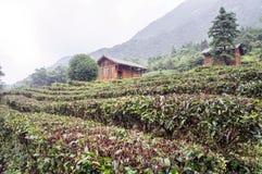 Guangxiprovincie China, beroemde toeristische attracties in guposhan Hezhou, Royalty-vrije Stock Foto's