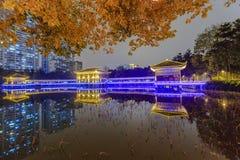 guangzhou liwan lake park at night Stock Images