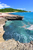 Guanica Reserve - Puerto Rico. The Caribbean coastline at Guanica Dry Forest Reserve - Puerto Rico Royalty Free Stock Photo