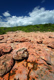 Guanica Reserve - Puerto Rico Royalty Free Stock Image