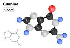 Guanine molecule Stock Image