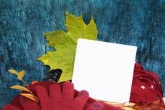 Guantes calientes de Borgoña con una bufanda y un sombrero en color de fondo azul de madera con las hojas de otoño, y reducido un Fotos de archivo