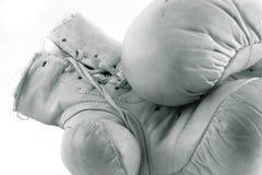 Guantes de boxeo Imagen de archivo libre de regalías