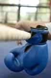 Guantes de boxeo Foto de archivo libre de regalías
