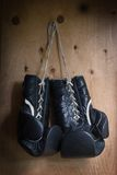 Guantes de boxeo Fotos de archivo libres de regalías