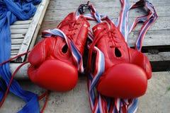 Guantes de boxeo Fotografía de archivo