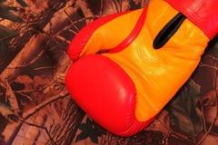 Guantes de boxeo de cuero Imagen de archivo libre de regalías